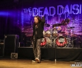 02_thedeaddaisies