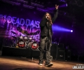 06_thedeaddaisies