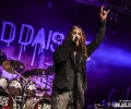 13_thedeaddaisies