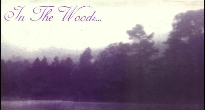 In The Woods...: l'audio di 'Respect My Solitude' dal nuovo album