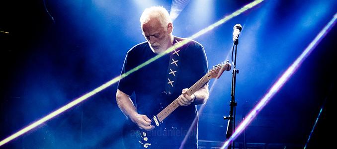 David Gilmour: ecco chi ha comprato la sua chitarra per 4 milioni di dollari