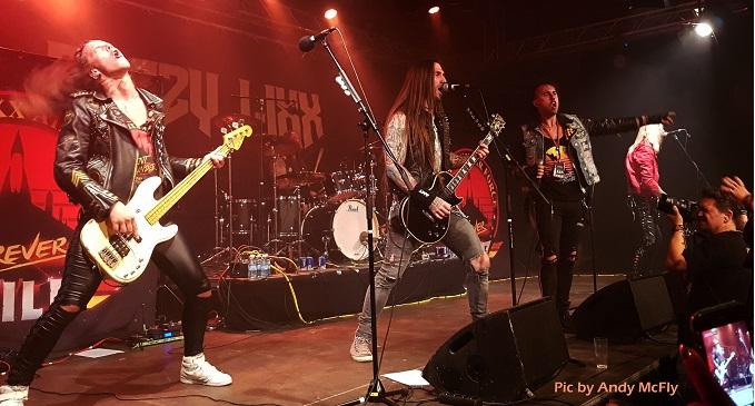 Wildfest - Live Report dal Belgio per uno dei festival più cool d'Europa